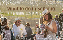 What to Do in Sonoma: Scribe Winery Pick-up Party