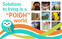 Solutions to Living in a POIDH World