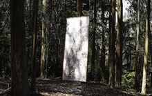 Go See This Art in the Woods (PHOTOS)