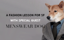 A Fashion Lesson for SF With Special Guest Menswear Dog