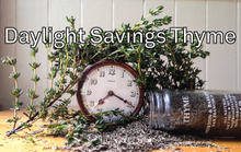 Don't Forget to Season Your Clocks This Weekend!