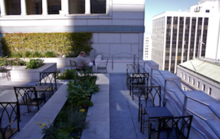 Explore Downtown SF's Hidden Public Spaces With This App