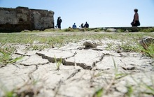 2013 Will Probably Be SF's Driest Year on Record
