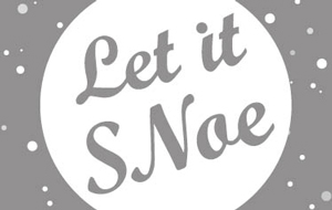 Let It SNoe: a Noe Valley Microhood